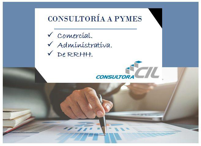 Servicio de Consultoria a Pymes